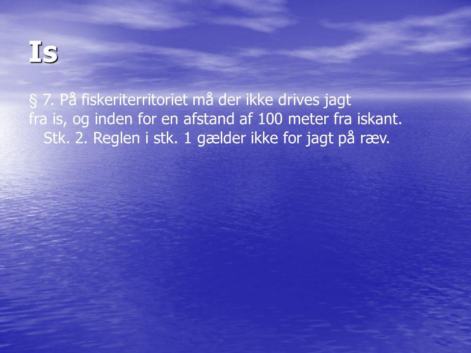 Is § 7. På fiskeriterritoriet må der ikke drives jagt fra is, og inden for en afstand af 100 meter fra iskant. Stk. 2. Reglen i stk. 1 gælder ikke for