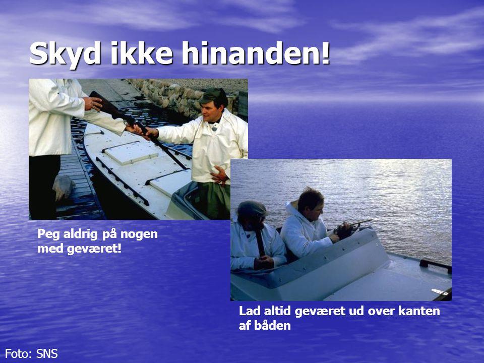 Skyd ikke hinanden! Peg aldrig på nogen med geværet! Lad altid geværet ud over kanten af båden Foto: SNS