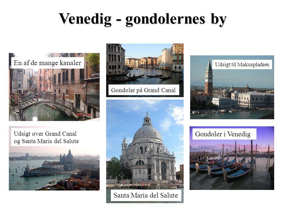 Venedig - gondolernes by En af de mange kanaler Gondoler i Venedig Udsigt til Makuspladsen Santa Maria del Salute Udsigt over Grand Canal og Santa Mar
