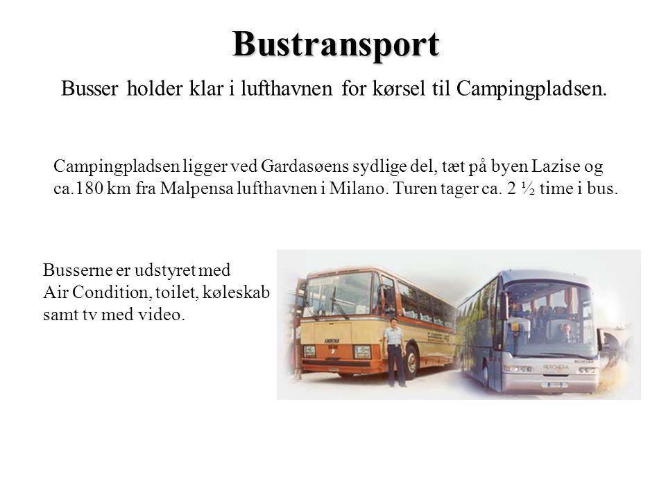 Bustransport Busser holder klar i lufthavnen for kørsel til Campingpladsen. Campingpladsen ligger ved Gardasøens sydlige del, tæt på byen Lazise og ca