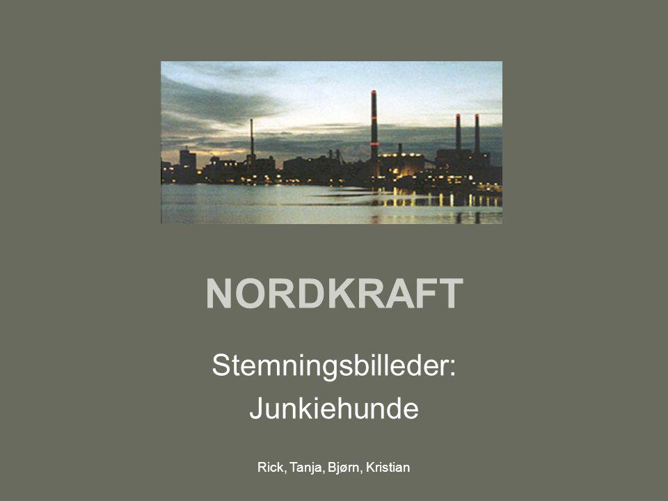 Rick, Tanja, Bjørn, Kristian NORDKRAFT Stemningsbilleder: Junkiehunde