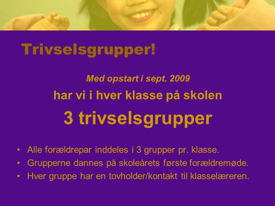 Trivselsgrupper! Med opstart i sept. 2009 har vi i hver klasse på skolen 3 trivselsgrupper •Alle forældrepar inddeles i 3 grupper pr. klasse. •Grupper