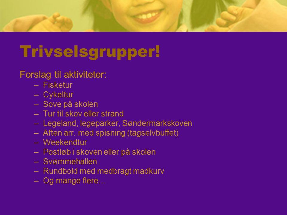 Trivselsgrupper! Forslag til aktiviteter: –Fisketur –Cykeltur –Sove på skolen –Tur til skov eller strand –Legeland, legeparker, Søndermarkskoven –Afte