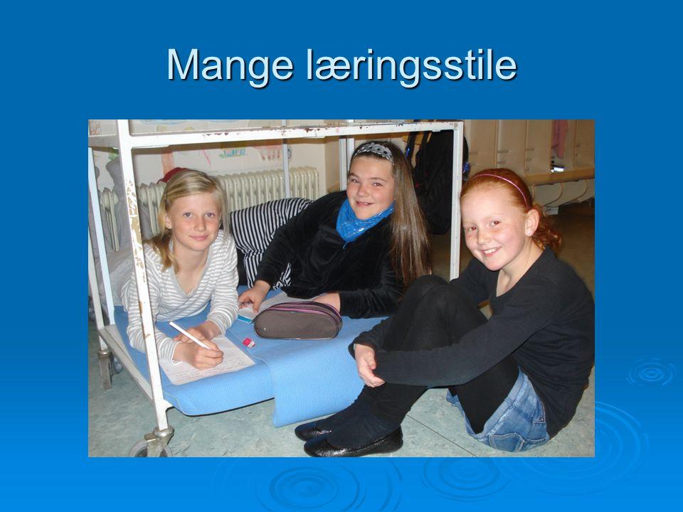 Nye fag  Mere idræt, motion og bevægelse  Lektiehjælp – tilbud  Flere timer i dansk og matematik  Engelsk fra 1.