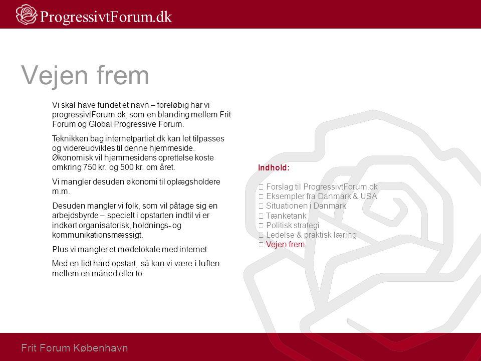 Vejen frem Vi skal have fundet et navn – foreløbig har vi progressivtForum.dk, som en blanding mellem Frit Forum og Global Progressive Forum. Teknikke