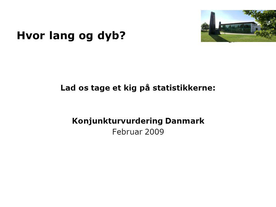 Hvor lang og dyb? Lad os tage et kig på statistikkerne: Konjunkturvurdering Danmark Februar 2009
