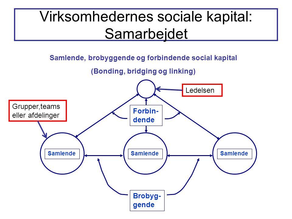 Virksomhedernes sociale kapital: Samarbejdet Samlende, brobyggende og forbindende social kapital (Bonding, bridging og linking) Samlende Brobyg- gende