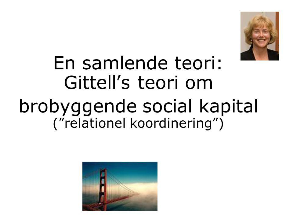 "En samlende teori: Gittell's teori om brobyggende social kapital (""relationel koordinering"")"
