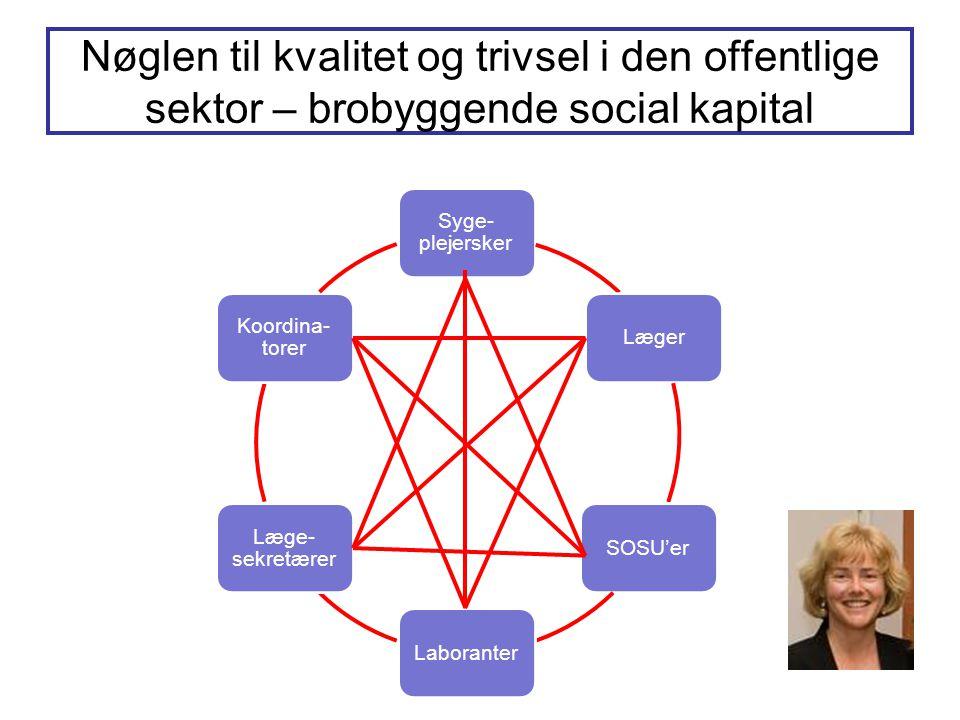 Nøglen til kvalitet og trivsel i den offentlige sektor – brobyggende social kapital Syge- plejersker LægerSOSU'erLaboranter Læge- sekretærer Koordina-