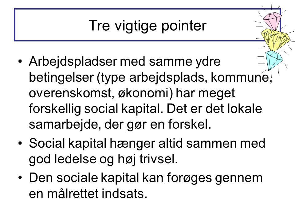Tre vigtige pointer •Arbejdspladser med samme ydre betingelser (type arbejdsplads, kommune, overenskomst, økonomi) har meget forskellig social kapital