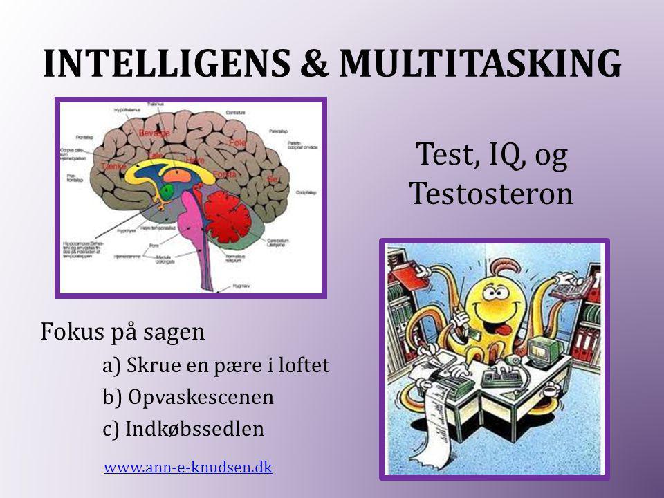 INTELLIGENS & MULTITASKING Fokus på sagen a) Skrue en pære i loftet b) Opvaskescenen c) Indkøbssedlen www.ann-e-knudsen.dk Test, IQ, og Testosteron