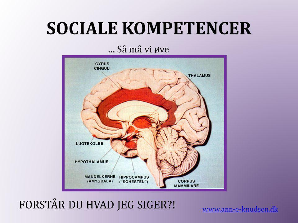 SOCIALE KOMPETENCER www.ann-e-knudsen.dk … Så må vi øve FORSTÅR DU HVAD JEG SIGER?!