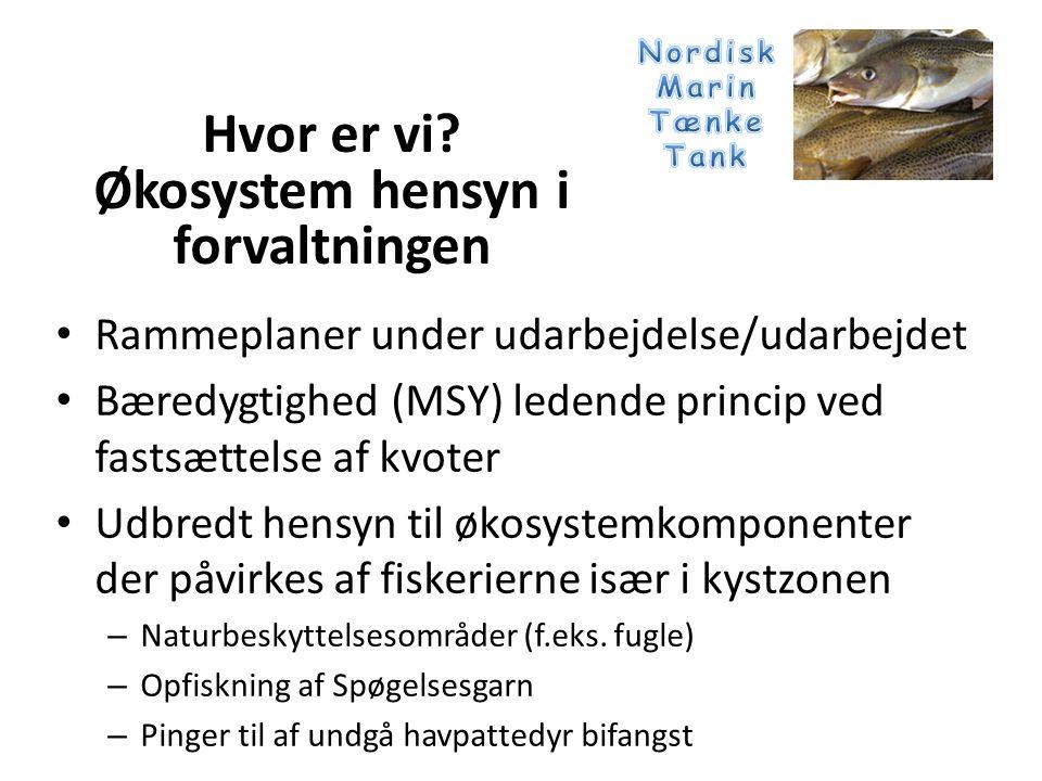 • Rammeplaner under udarbejdelse/udarbejdet • Bæredygtighed (MSY) ledende princip ved fastsættelse af kvoter • Udbredt hensyn til økosystemkomponenter der påvirkes af fiskerierne især i kystzonen – Naturbeskyttelsesområder (f.eks.