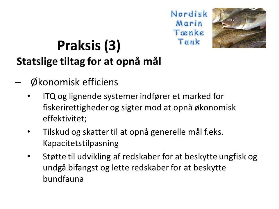 – Økonomisk efficiens • ITQ og lignende systemer indfører et marked for fiskerirettigheder og sigter mod at opnå økonomisk effektivitet; • Tilskud og skatter til at opnå generelle mål f.eks.