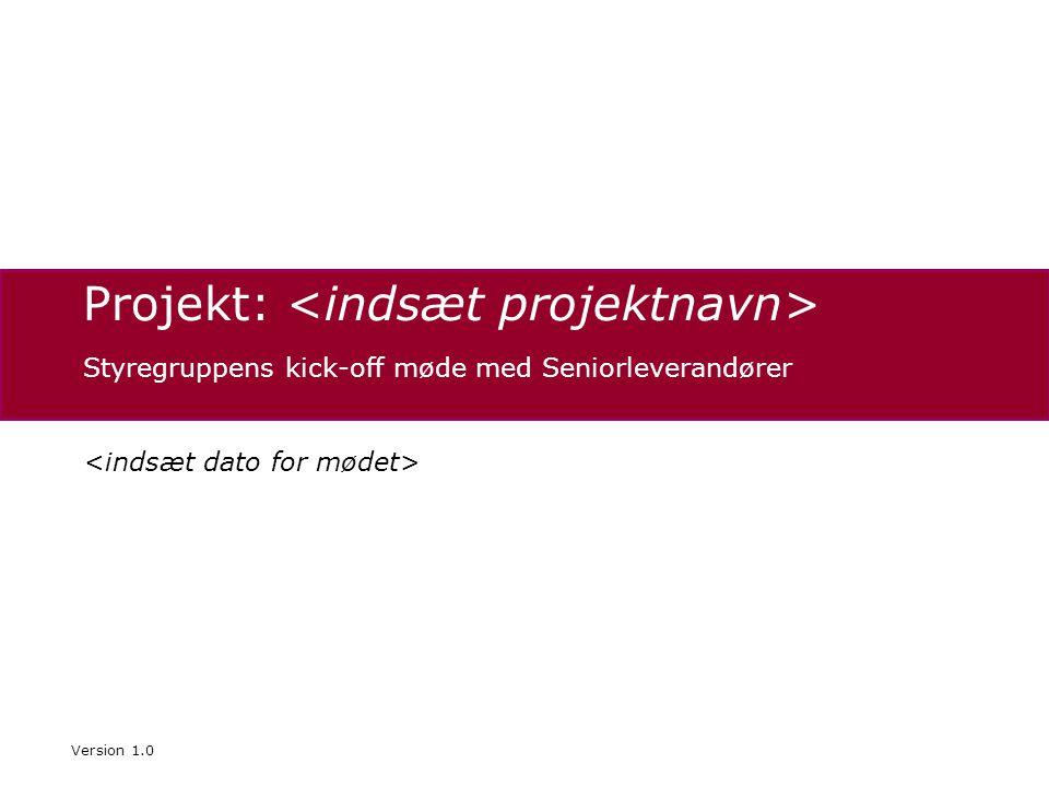Projekt: Styregruppens kick-off møde med Seniorleverandører Version 1.0