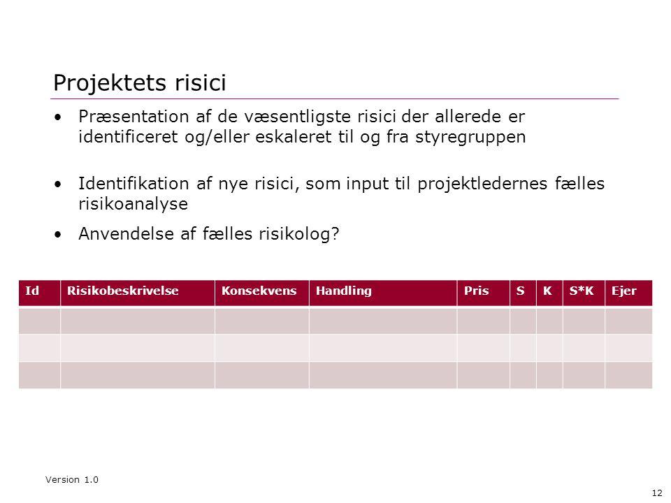 12 Projektets risici •Præsentation af de væsentligste risici der allerede er identificeret og/eller eskaleret til og fra styregruppen •Identifikation