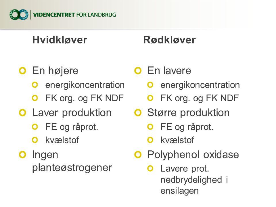 Hvidkløver En højere energikoncentration FK org. og FK NDF Laver produktion FE og råprot. kvælstof Ingen planteøstrogener Rødkløver En lavere energiko