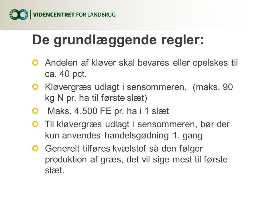 De grundlæggende regler: Andelen af kløver skal bevares eller opelskes til ca. 40 pct. Kløvergræs udlagt i sensommeren, (maks. 90 kg N pr. ha til førs