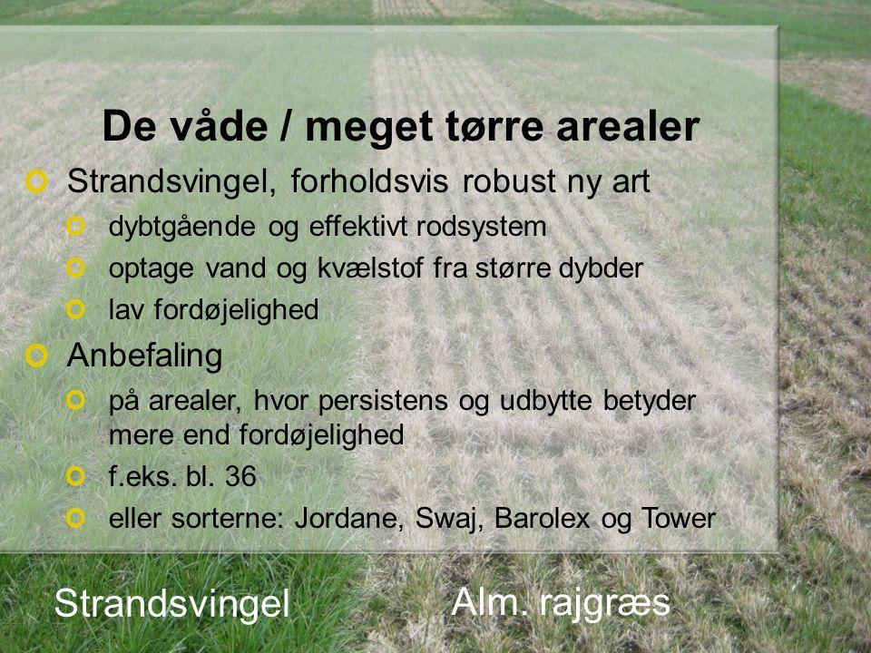 Græsarternes optagelse af kvælstof Kg N pr.ha Oversigt over Landsforsøg, 2011, s.