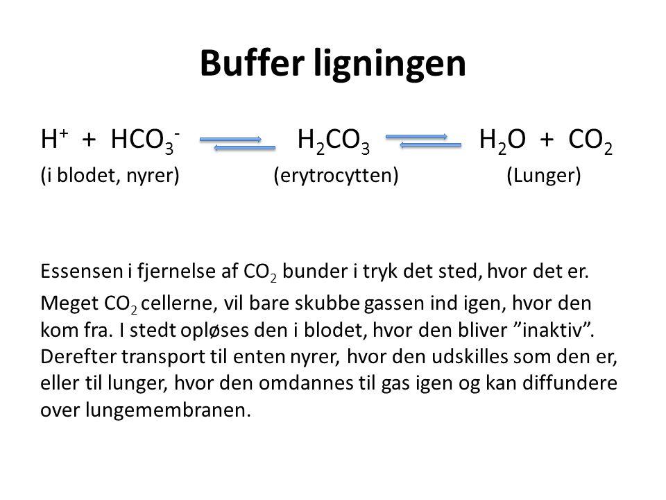 Buffer ligningen H + + HCO 3 - H 2 CO 3 H 2 O + CO 2 (i blodet, nyrer)(erytrocytten)(Lunger) Essensen i fjernelse af CO 2 bunder i tryk det sted, hvor