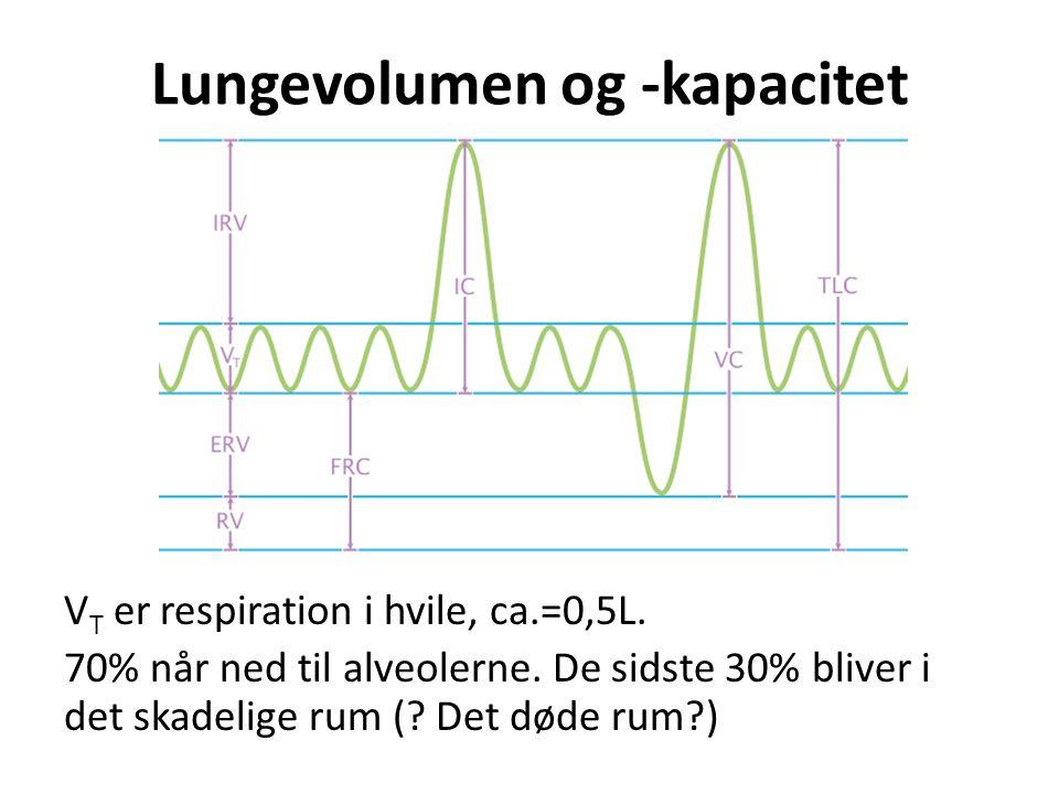 Lungevolumen og -kapacitet V T er respiration i hvile, ca.=0,5L. 70% når ned til alveolerne. De sidste 30% bliver i det skadelige rum (? Det døde rum?