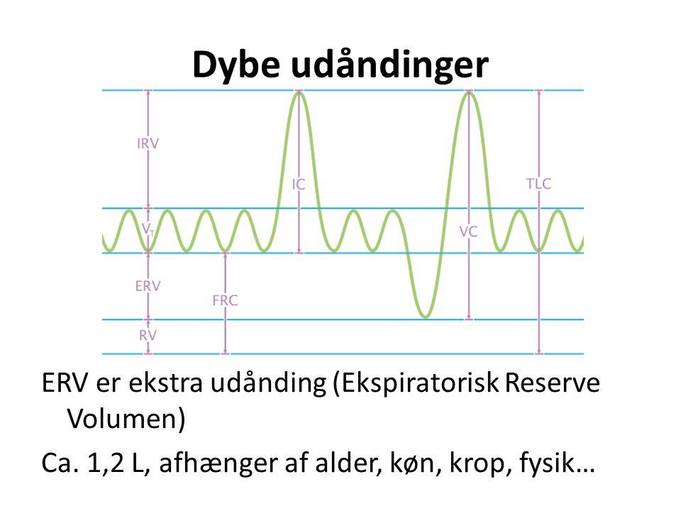Dybe udåndinger ERV er ekstra udånding (Ekspiratorisk Reserve Volumen) Ca. 1,2 L, afhænger af alder, køn, krop, fysik…