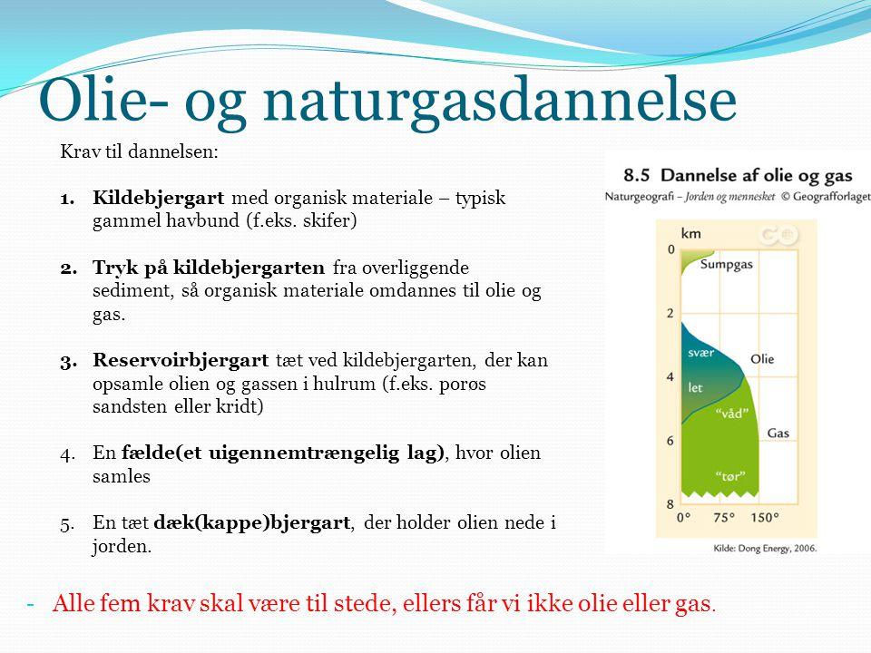 Olie- og naturgasdannelse Krav til dannelsen: 1.Kildebjergart med organisk materiale – typisk gammel havbund (f.eks. skifer) 2.Tryk på kildebjergarten