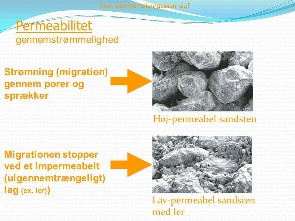 Permeabilitet gennemstrømmelighed Strømning (migration) gennem porer og sprækker Migrationen stopper ved et impermeabelt (uigennemtrængeligt) lag (ex.
