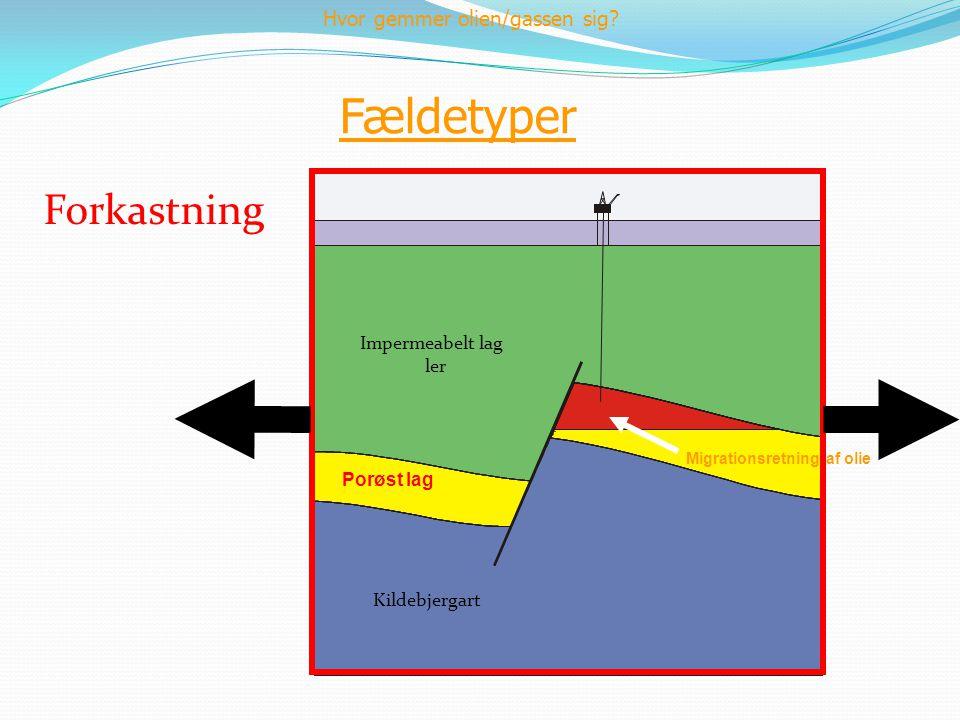 Fældetyper Forkastning Kildebjergart Impermeabelt lag ler Porøst lag Hvor gemmer olien/gassen sig? Migrationsretning af olie