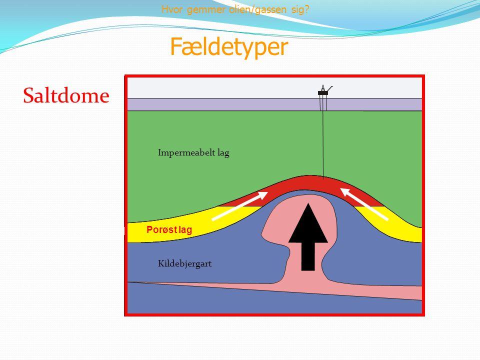 Fældetyper Saltdome Impermeabelt lag Kildebjergart Porøst lag Hvor gemmer olien/gassen sig?
