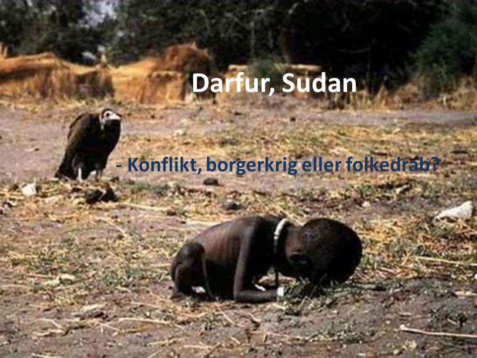 Darfur, Sudan - Konflikt, borgerkrig eller folkedrab?