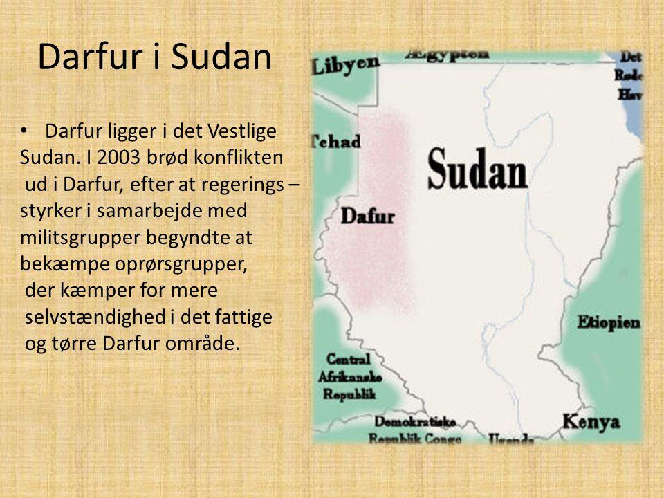 Darfur i Sudan • Darfur ligger i det Vestlige Sudan. I 2003 brød konflikten ud i Darfur, efter at regerings – styrker i samarbejde med militsgrupper b