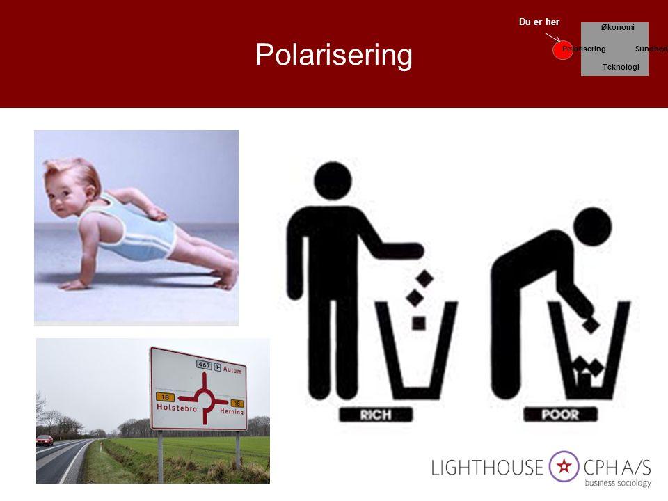 Polarisering Økonomi Teknologi Sundhed Du er her Polarisering