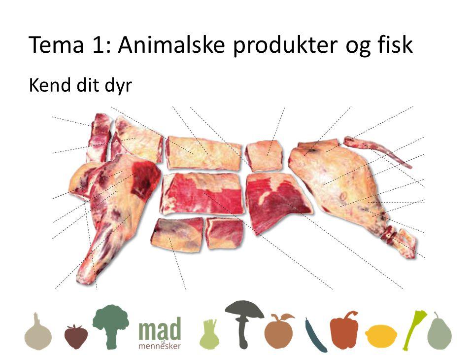 Tema 1: Animalske produkter og fisk Kend dit dyr