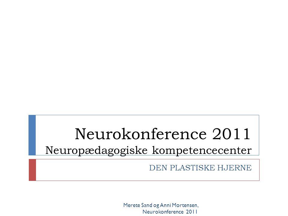 Susan Hart Merete Sand og Anni Mortensen, Neurokonference 2011  Workshop neocortex – den tænkende hjerne