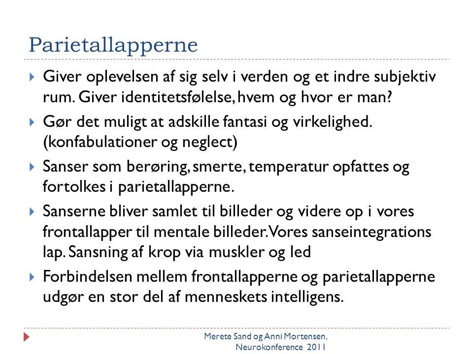 Insula, (den 5. lap) Merete Sand og Anni Mortensen, Neurokonference 2011