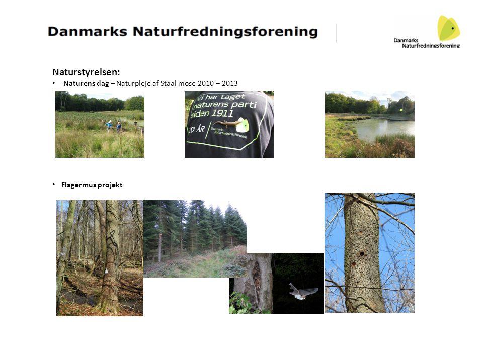 Naturstyrelsen: • Naturens dag – Naturpleje af Staal mose 2010 – 2013 • Flagermus projekt
