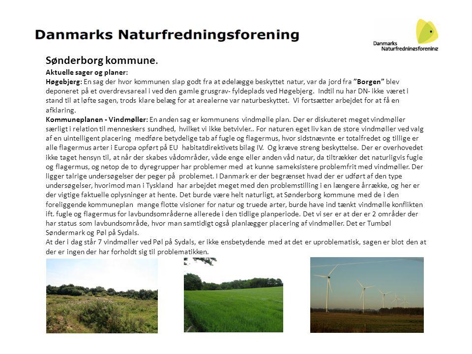 """Sønderborg kommune. Aktuelle sager og planer: Høgebjerg: En sag der hvor kommunen slap godt fra at ødelægge beskyttet natur, var da jord fra """"Borgen"""""""