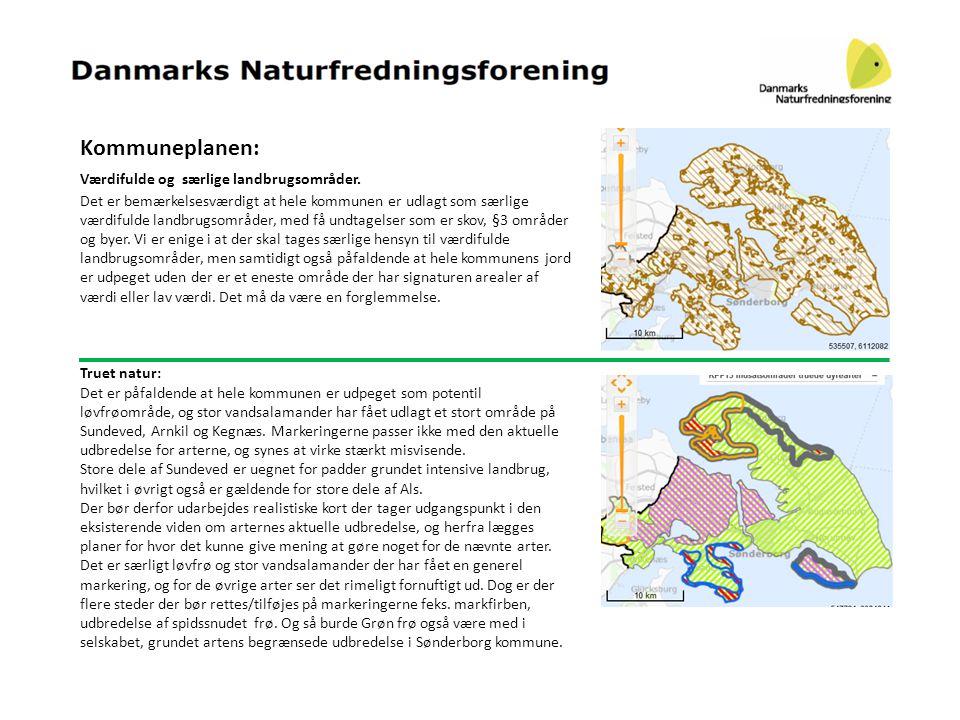 Sønderborg kommune: Der har også været udslip af Gylle og ensilagesaft på Stolbroløkke.
