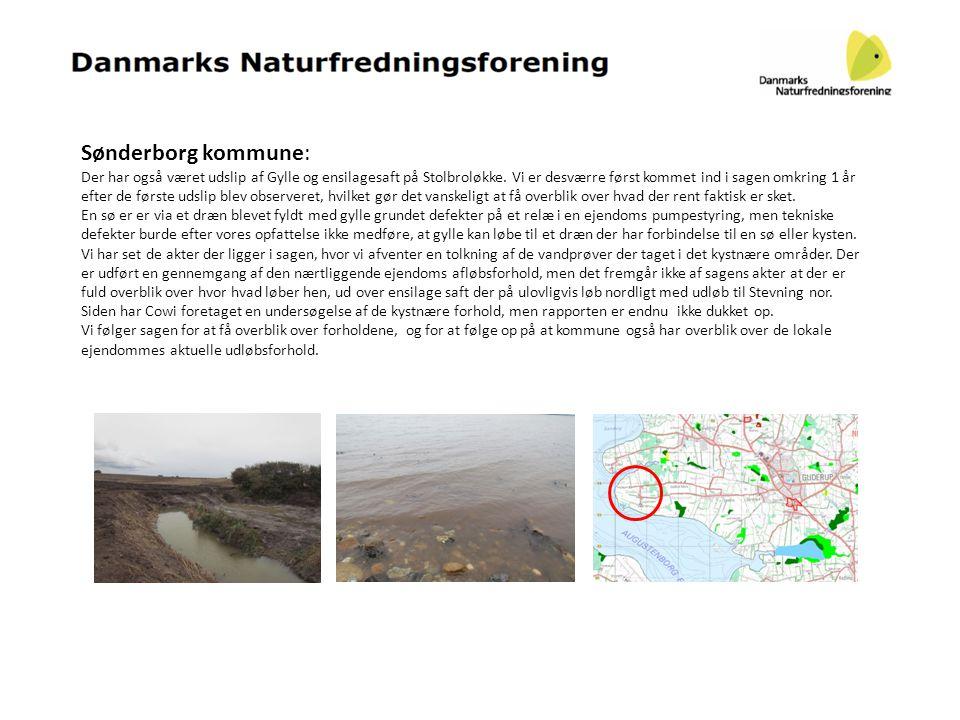 Sønderborg kommune: Der har også været udslip af Gylle og ensilagesaft på Stolbroløkke. Vi er desværre først kommet ind i sagen omkring 1 år efter de