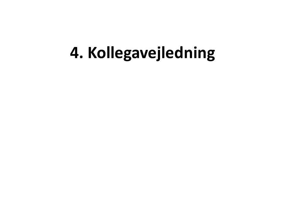 4. Kollegavejledning