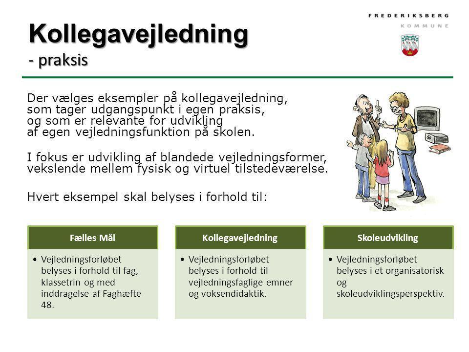 Kollegavejledning - praksis Der vælges eksempler på kollegavejledning, som tager udgangspunkt i egen praksis, og som er relevante for udvikling af egen vejledningsfunktion på skolen.