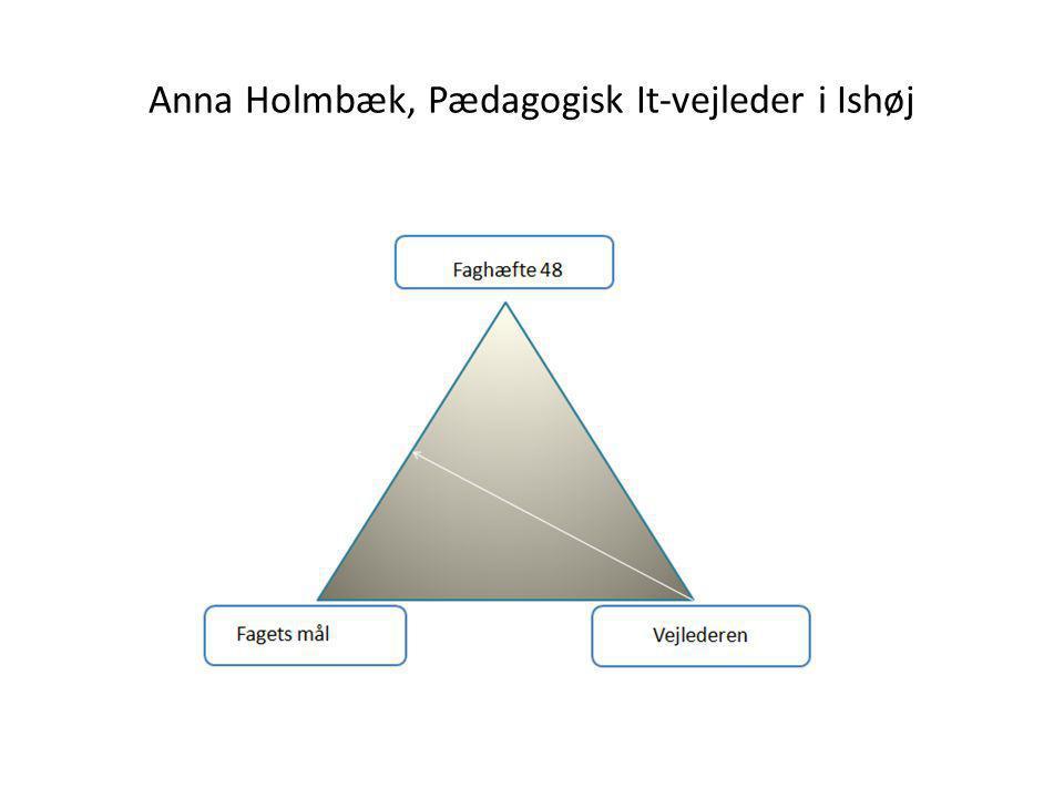 Anna Holmbæk, Pædagogisk It-vejleder i Ishøj