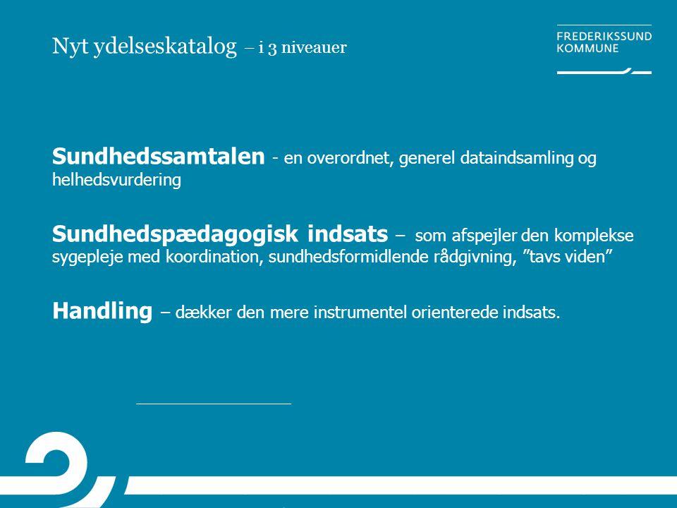 Nyt ydelseskatalog – i 3 niveauer Sundhedssamtalen - en overordnet, generel dataindsamling og helhedsvurdering Sundhedspædagogisk indsats – som afspej