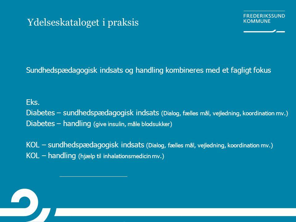 Ydelseskataloget i praksis Sundhedspædagogisk indsats og handling kombineres med et fagligt fokus Eks. Diabetes – sundhedspædagogisk indsats (Dialog,