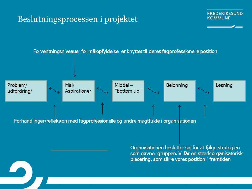 """Beslutningsprocessen i projektet Problem/ udfordring/ Mål/ Aspirationer Middel – """"bottom up"""" BelønningLøsning Forhandlinger/refleksion med fagprofessi"""