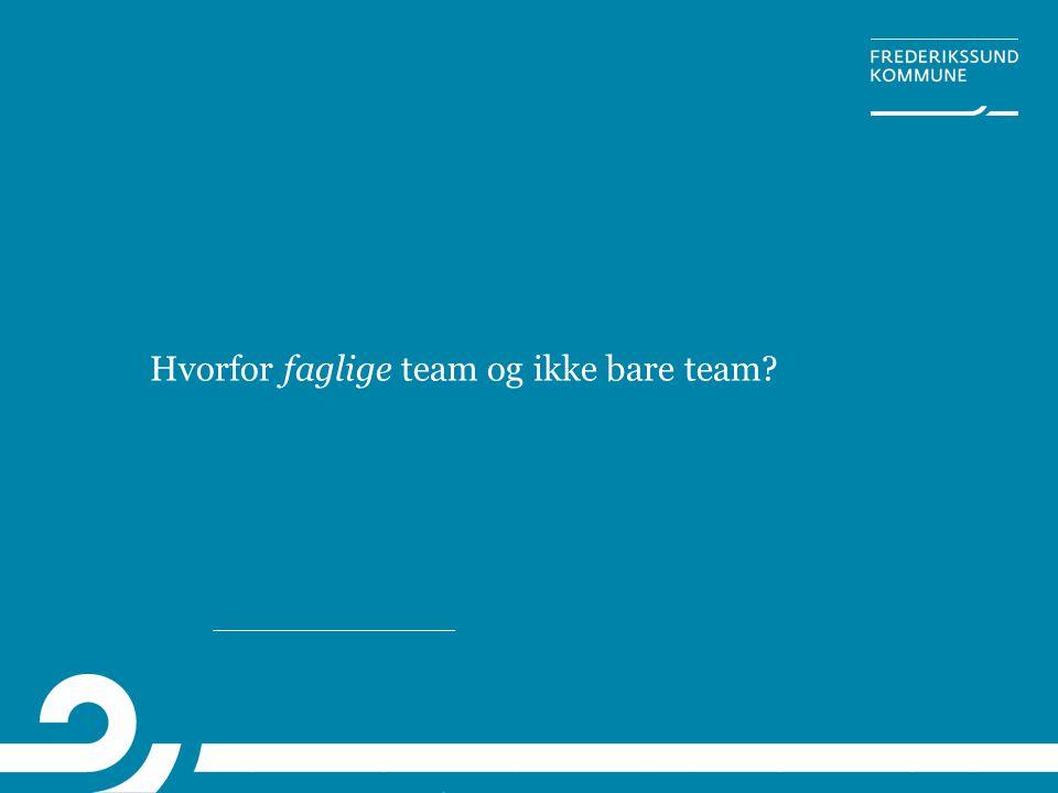Hvorfor faglige team og ikke bare team?