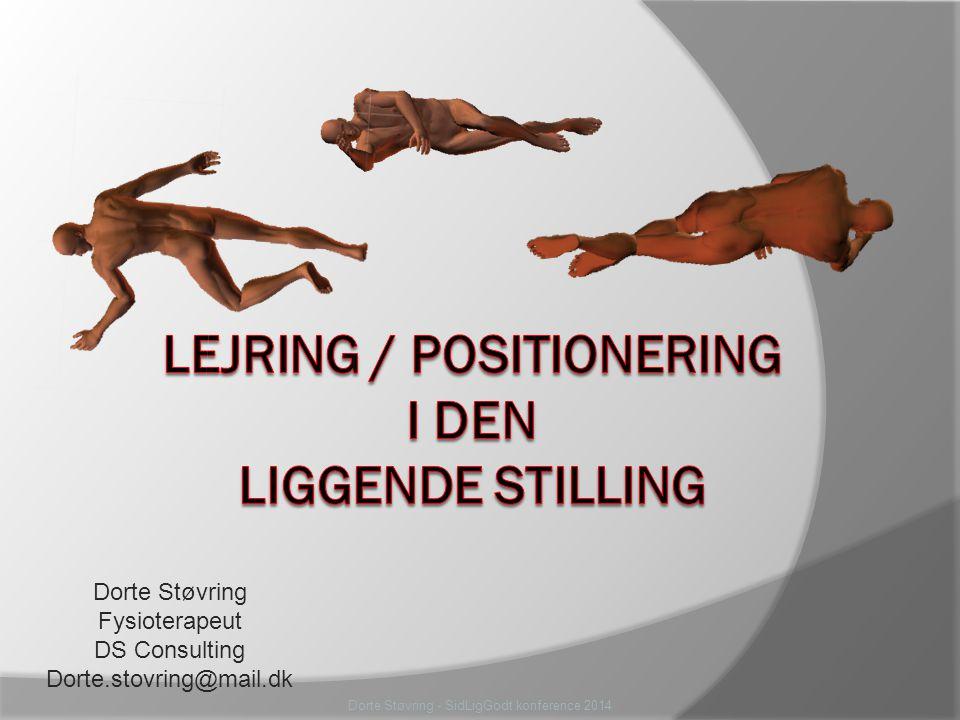 Dorte Støvring - SidLigGodt konference 2014 Dorte Støvring Fysioterapeut DS Consulting Dorte.stovring@mail.dk