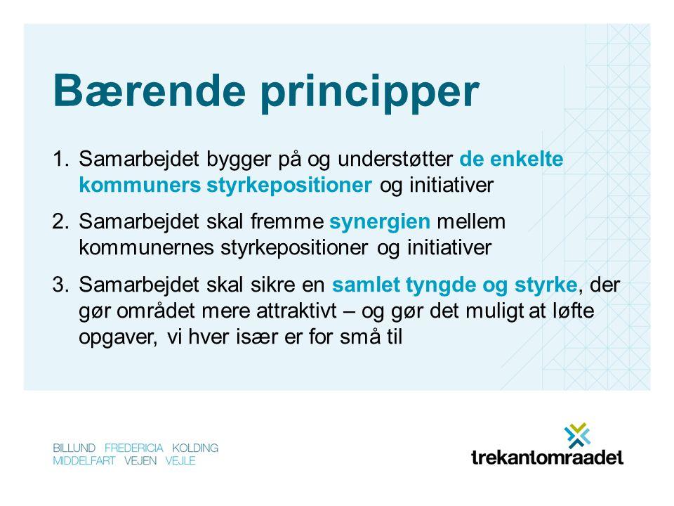 Bærende principper 1.Samarbejdet bygger på og understøtter de enkelte kommuners styrkepositioner og initiativer 2.Samarbejdet skal fremme synergien mellem kommunernes styrkepositioner og initiativer 3.Samarbejdet skal sikre en samlet tyngde og styrke, der gør området mere attraktivt – og gør det muligt at løfte opgaver, vi hver især er for små til
