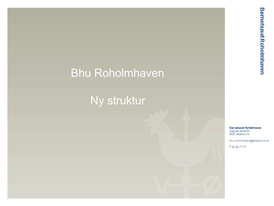 Børnehuset Roholmhaven Hvorfor omstrukturere.Organisationen i dag.